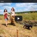 БД2012: Видео